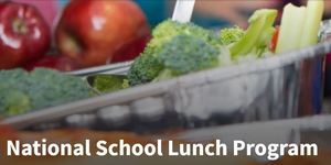 USDA makes school meals FREE through December 31