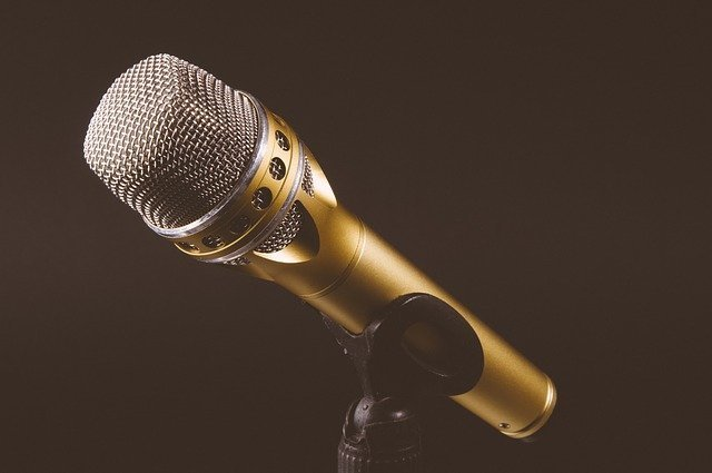 Microphone: https://pixabay.com/photos/microphone-mic-mike-voice-audio-1246057/
