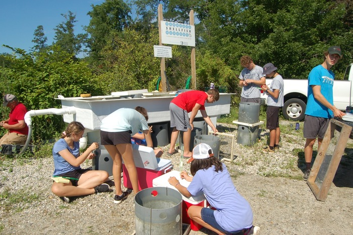 Yarmouth students working at the shellfish nursery