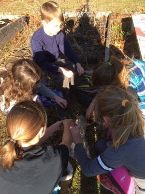 HMS 5th Graders working in the district garden